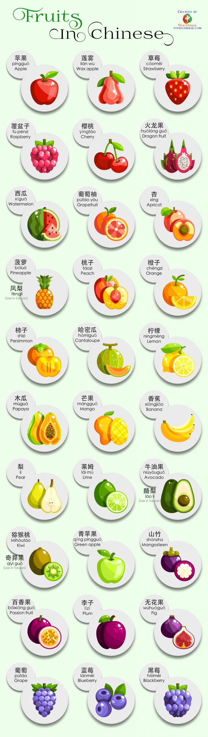 Fruits in Chinese Infographic