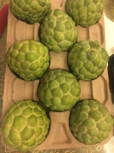 释迦 shì jiā, Sugar Apple